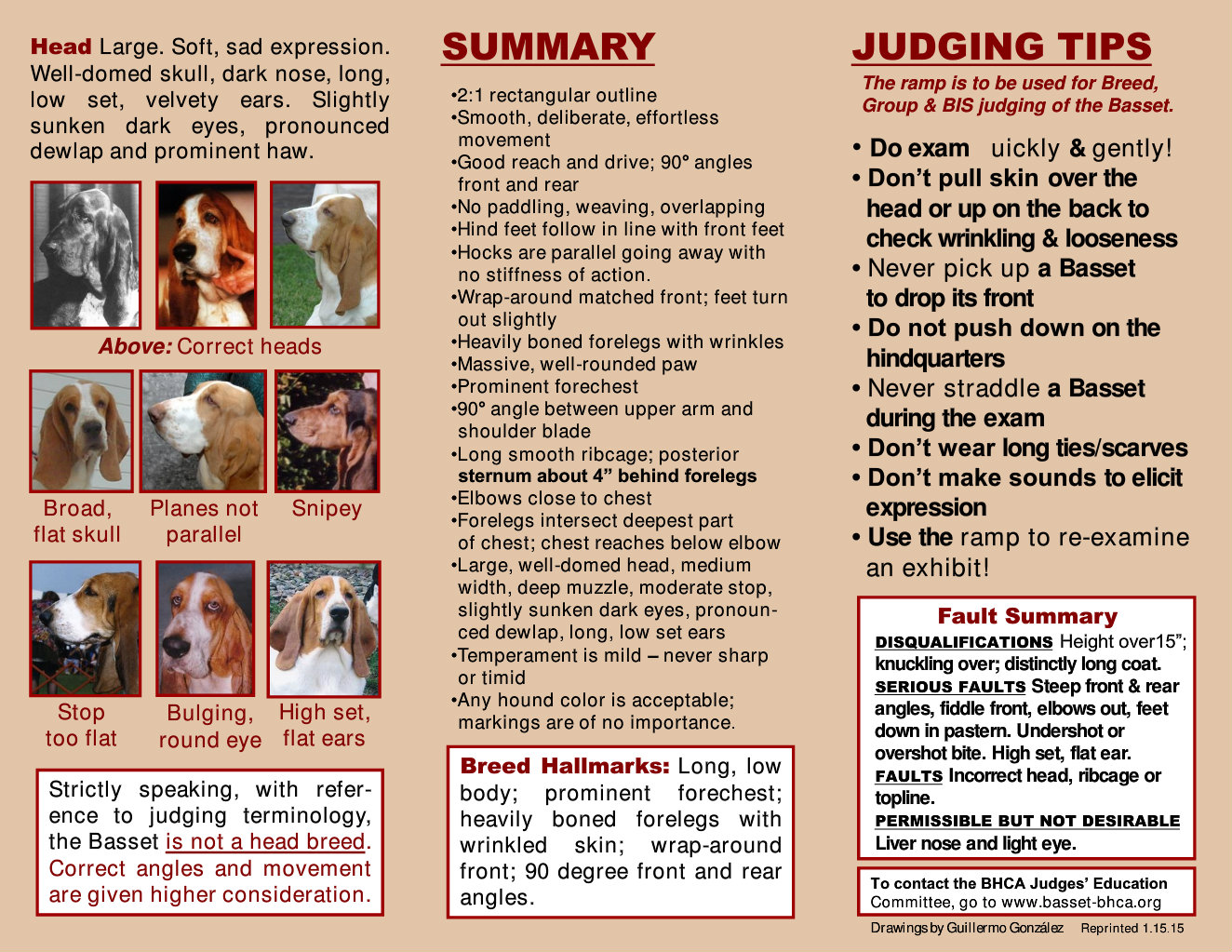 Pocket Guide to the Basset Hound Flipbook